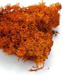Narancs színű Izlandi moha