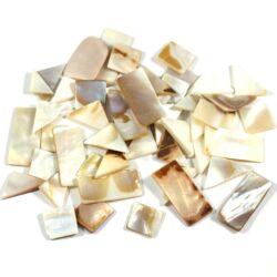 Vegyes gyöngyházas kagylóhéj darabok