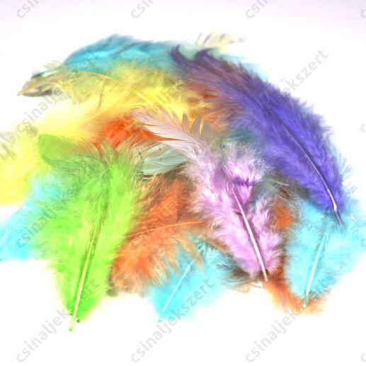 Pasztell vegyes madártoll