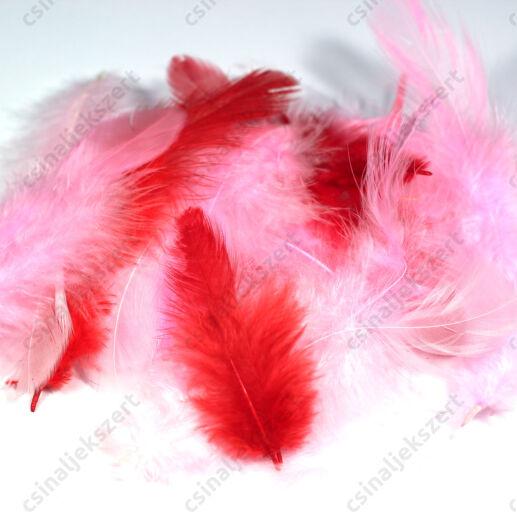 Piros-rózsaszín vegyes madártoll