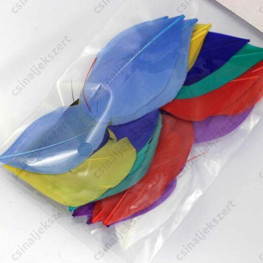 Vegyes színes madártoll