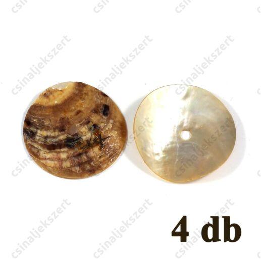Korong alakú gyöngyházas kagyló gyöngy